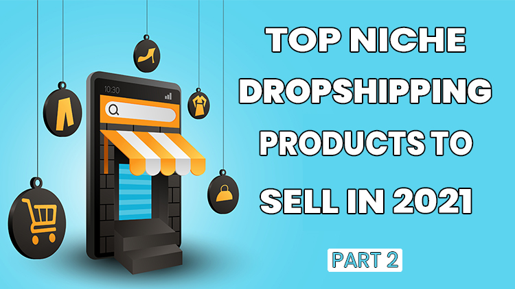 niche dropshipping products