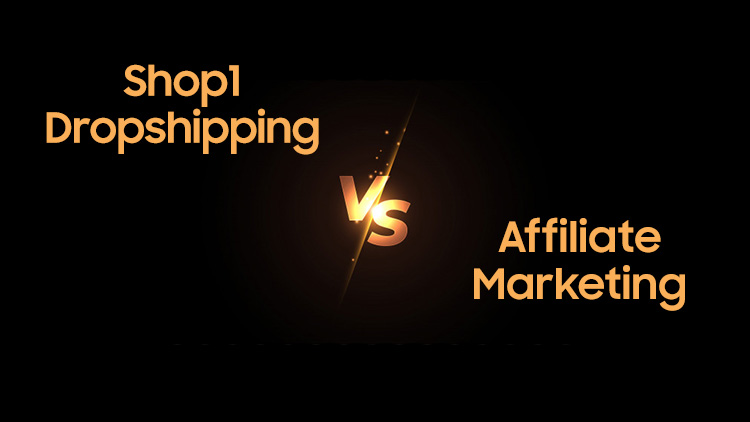 Dropshipping Business VS Affiliate Marketing